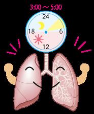 肺の活動時間★漢方薬の厚生堂