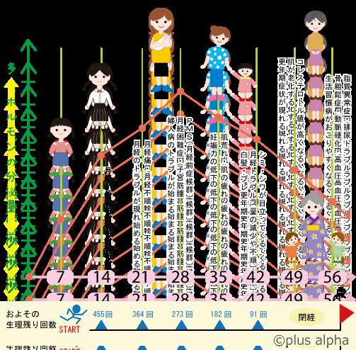 女性の腎精、生理の回数