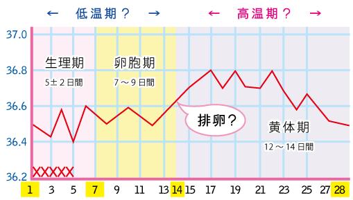 低温期と高温期にわけてみた基礎体温表
